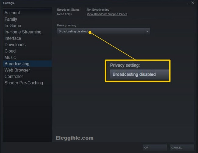 Steam privacy settings how to broadcast on steam
