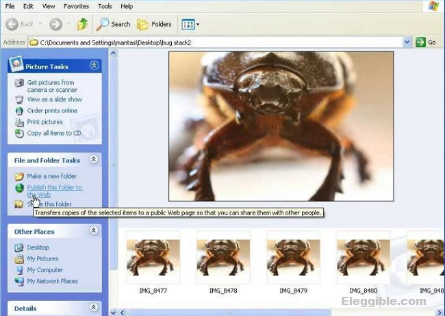 CombineZP free focus stacking software